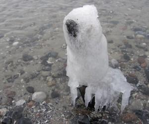 Hockt im Eiswasser und wartet auf Tauwetter.