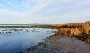 Niedrigwasser am Kubitzer Bodden