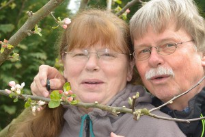 Zwei Blüten im Apfelbaum