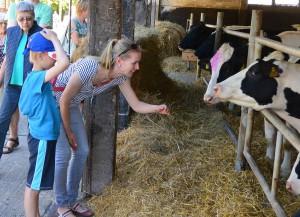 """Landwirtschaft ist neben Tourismus wichtigste Erwerbsquelle für die Rüganer. Um Vertrauen bei Verbrauchern wirbt die Agrargenossenschaft Neklade beim """"Tag des offenen Hofes"""". 2.500 Insulaner und Touristen kamen."""