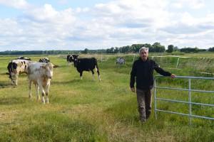 """""""Wir haben die Tiere an den Aufenthalt auf der Weide vorbereitet; die Renaturierungsfläche haben wir mit Gattern in drei Sektionen eingeteilt"""", sagt Dr. Manfred Möller, Geschäftsführer der APV."""