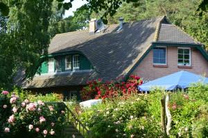 In Rosen gebettet: Gasthof und Pension Having-Hof ganz am Ende des Reddewitzer Höfts