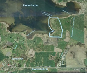 Am südöstlichen Ufer des Kubitzer Boddens liegt das 60 Hektar große Areal der Renaturierung. Hinter dem Deich soll durch Wechsel von Nässe und Trockenheit die ursprüngliche Vegetation wiederhergestellt werden. Bild: Google Earth, bearbeitet fl.